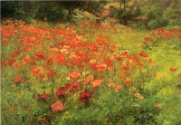 "Copy of Painting ""Poppy Field"""
