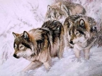 "Copy of Painting ""Wolves"""